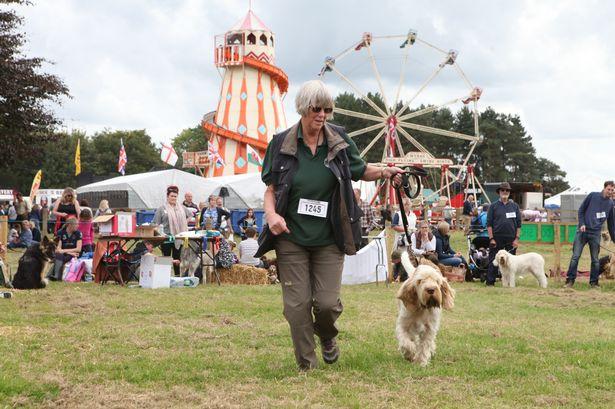 Frampton-Country-Fair
