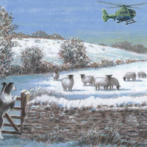 Helicopter rural scenes Christmas cards