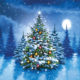 O'Christmas Tree Christmas cards